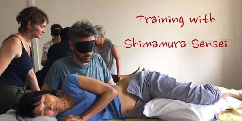 Shimamura Sensei blind acupuncture treatment