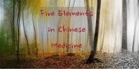 What are the five elements in Chinese Medicine?